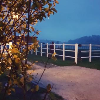 Bartlgut_bei_Nacht03