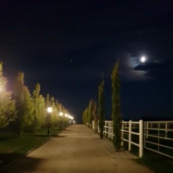 Bartlgut_bei_Nacht05