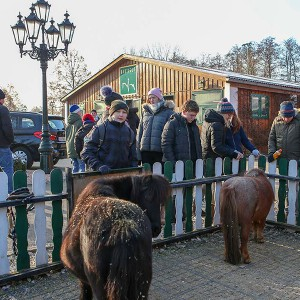Besuch der Kinder bei den beiden Ponys Stupsi und Bartl