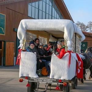 Die Kinder haben Spass beim Kutschenfahren mit Kutscher Riedl Rudolf