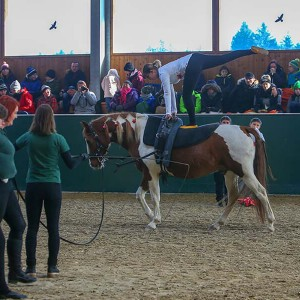 Diese junge Dame bekommt eine hohe Note fuer diese schwierige Uebung am Pferd