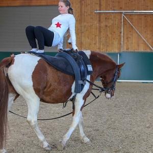Junge Dame mit dem Ruecken zum Pferd