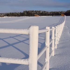bartlgut_winter_019_1