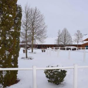 bartlgut_winter_019_7