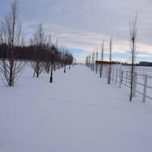 bartlgut_winter_019_8