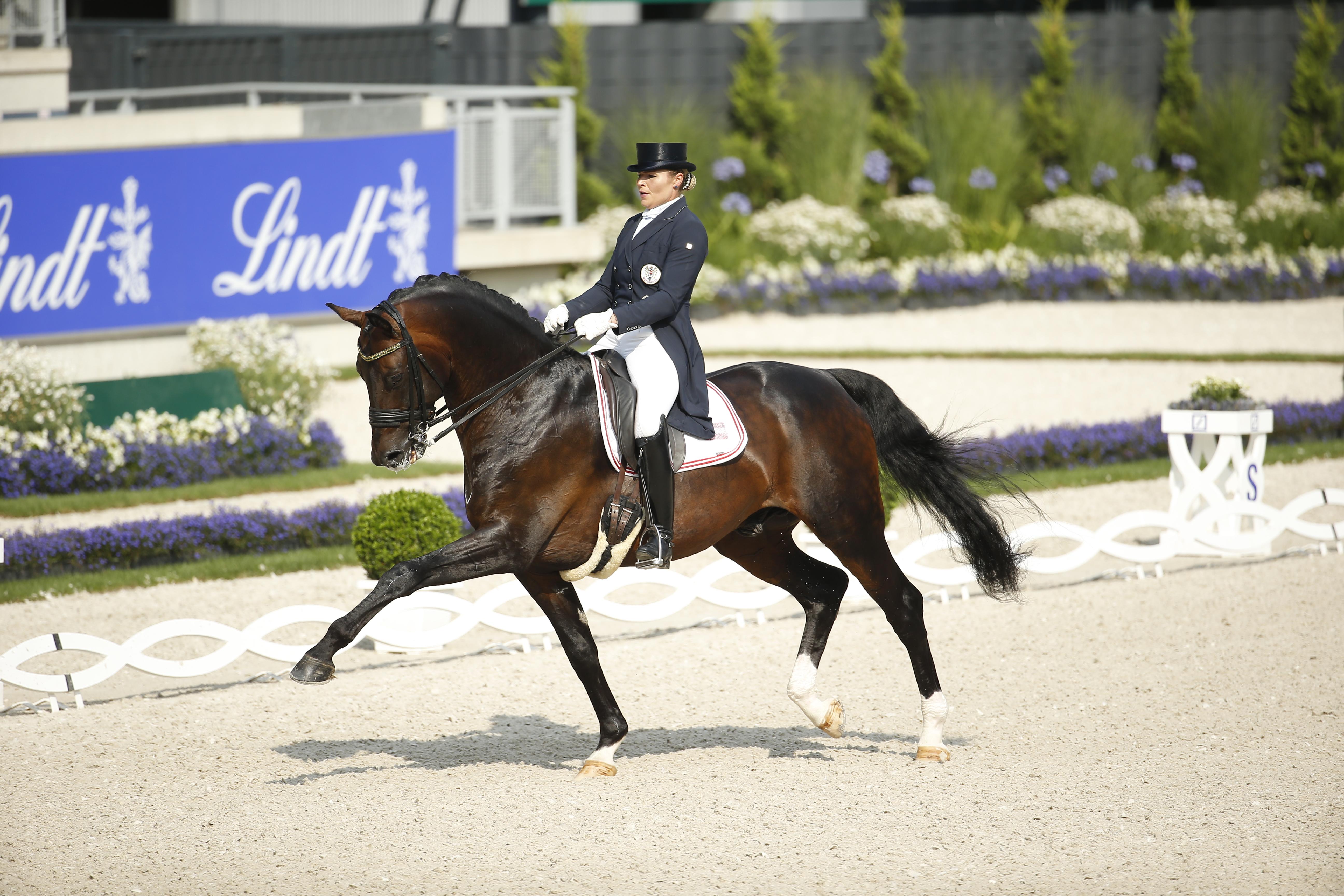Reiten, Turnier, Pferde, Weltfest des Pferdesports, Dressur, GP, CDI4*